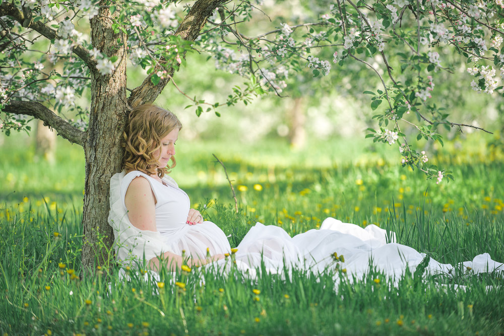 Newborn and Maternity Portrait Photography