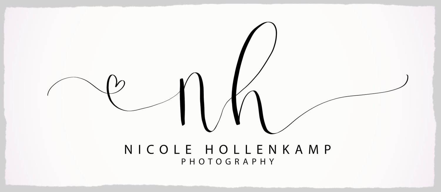 Nicole Hollenkamp - Wedding & Portrait Photographer