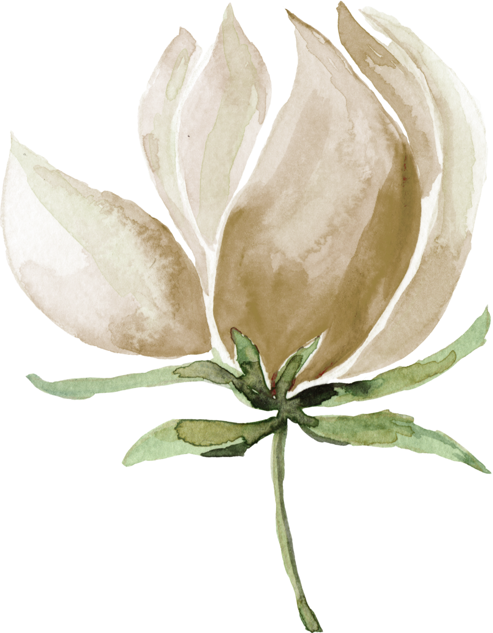 Flower 24.png