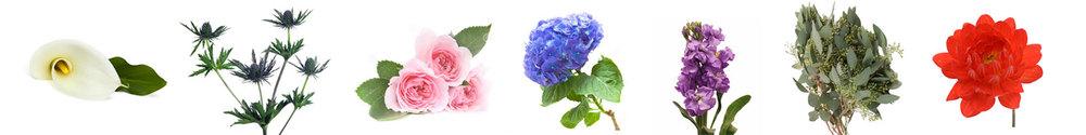 flower_meanings_ben_jen.jpg