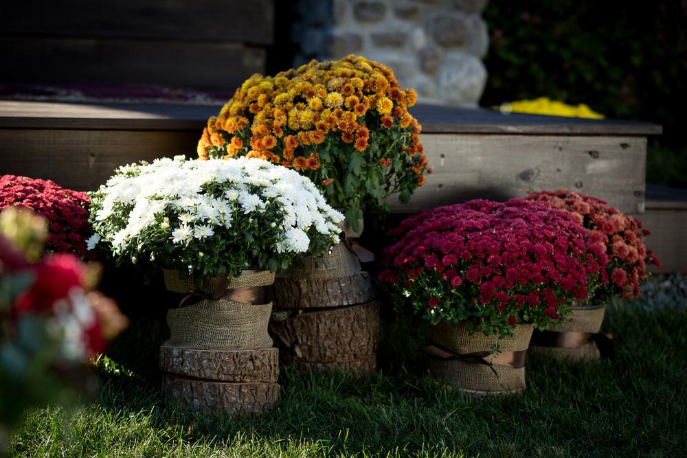 fall_wedding_burlap_tree_stump_mums_flower_arrangements