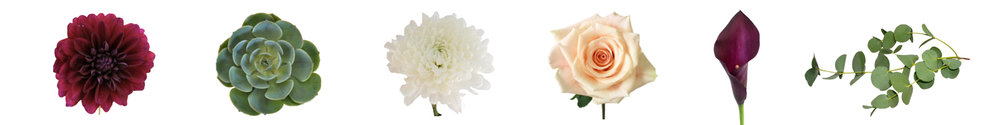 ross_kassie_wedding_flower_meanings_perennia.jpg