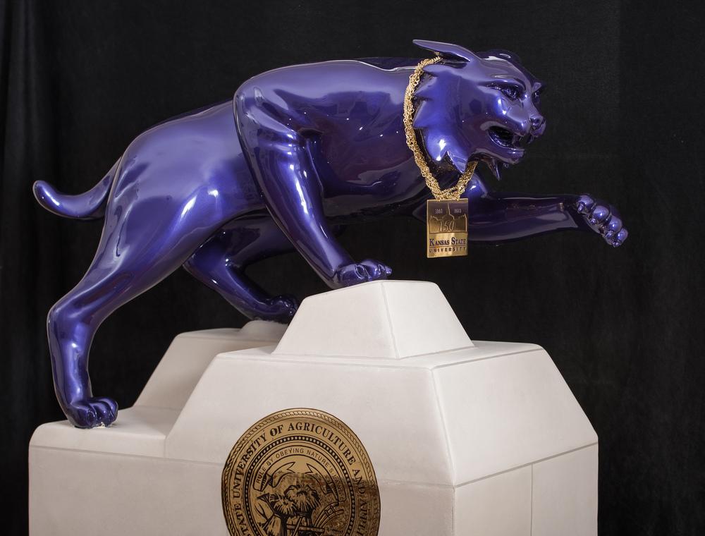 Kansas State Wildcat