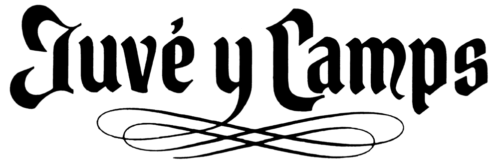 JuveyCamps_Logo.jpg