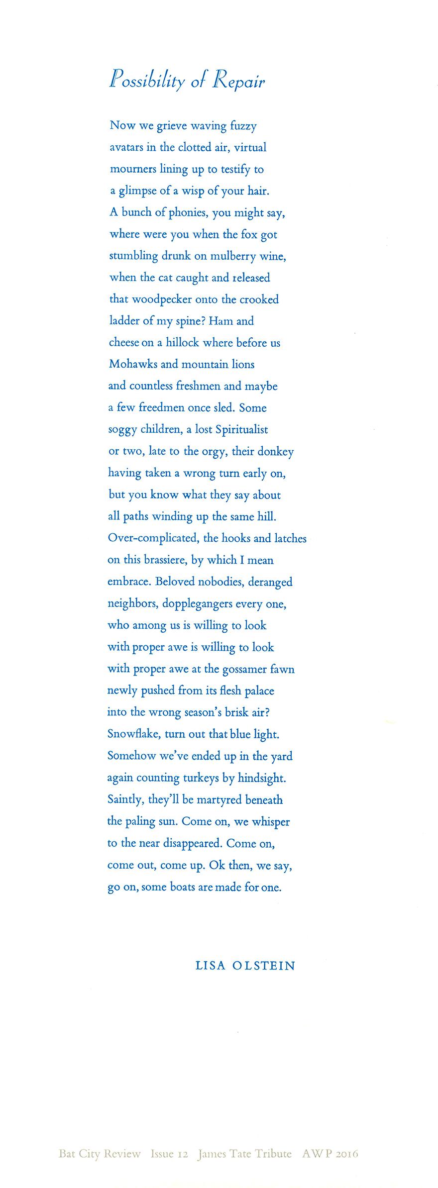 """Broadside of """"Possibility of Repair"""" by Lisa Olstein"""