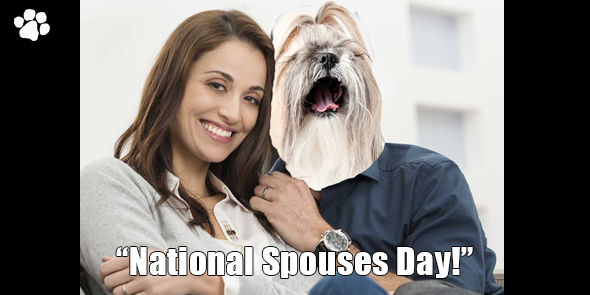 national-spouses-day