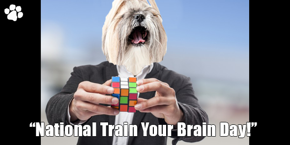 BossHam-Train-Your-Brain-TW.png