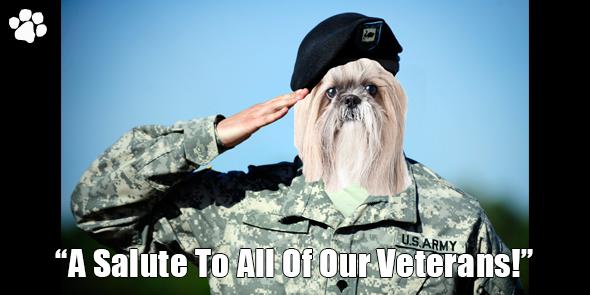 BossHam-Veterans-Day-TW.png