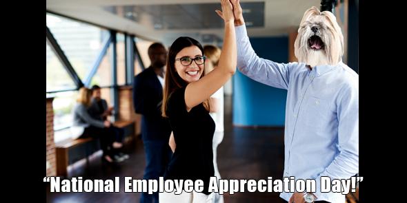 BossHam-Employee-Apprec-TW.png