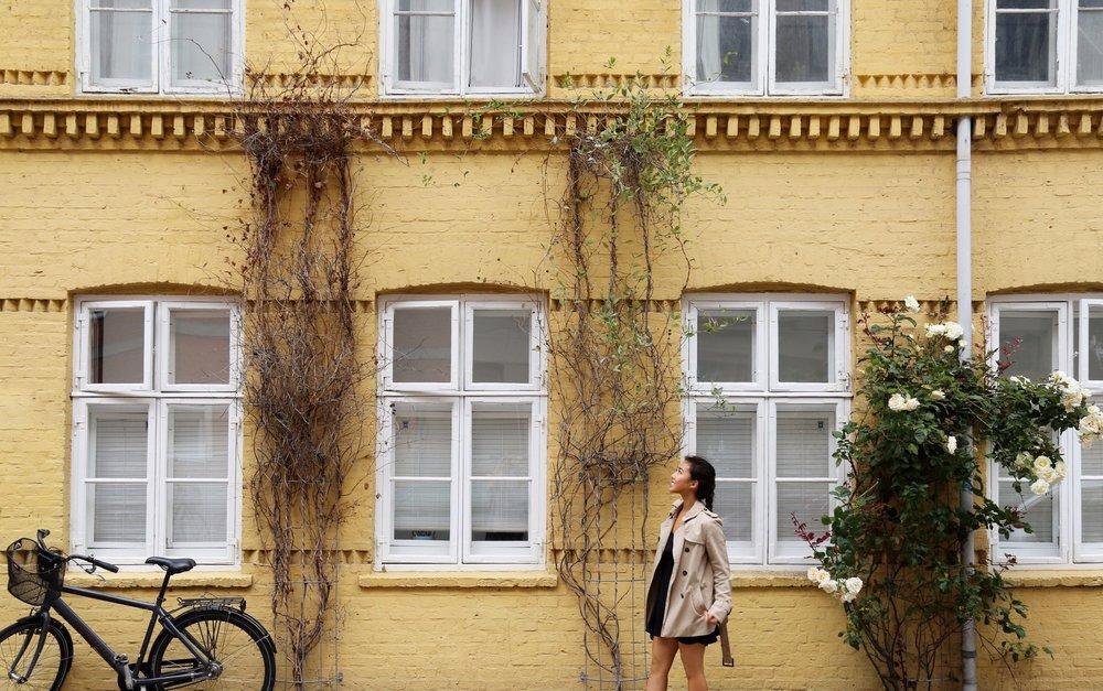 Wander around Nørrebro