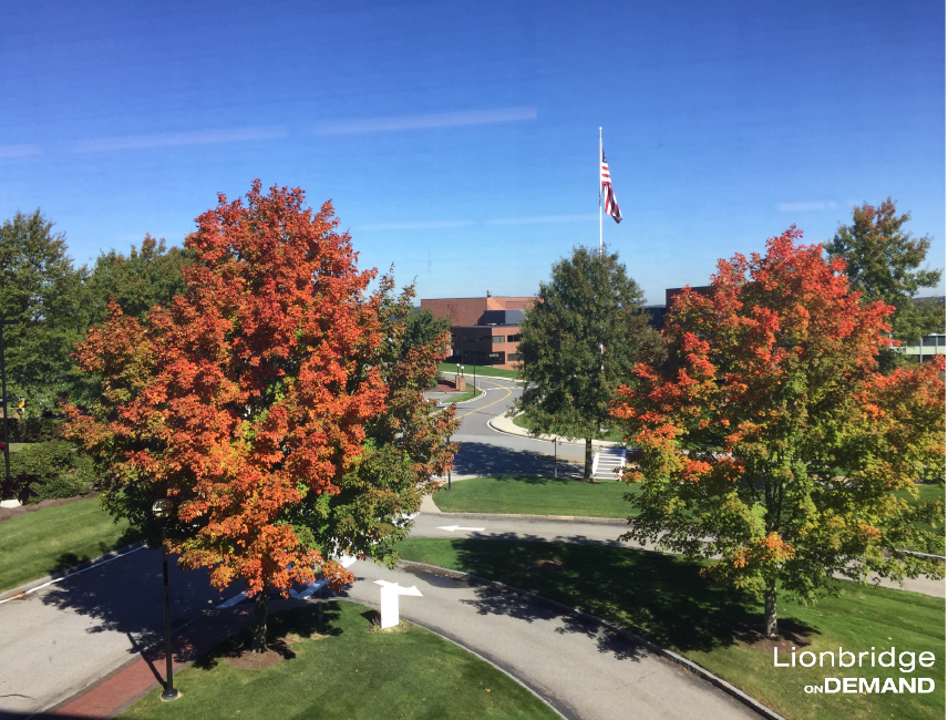 Lionbridge Office View in the Fall.png
