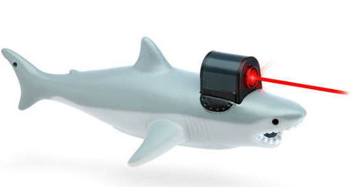 Shark-With-Frickin-Laser-Pointer.jpg