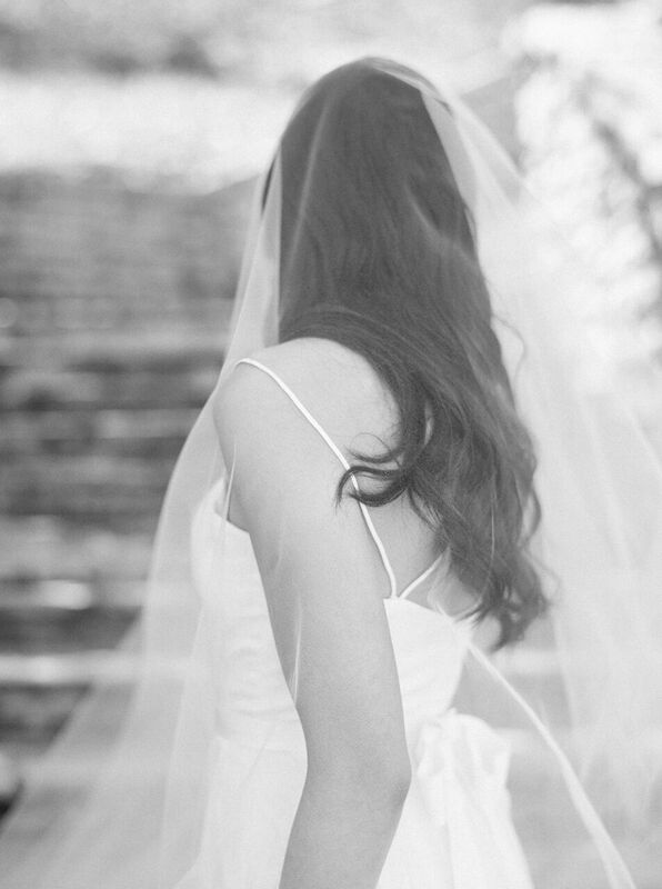 veil over bride portrait
