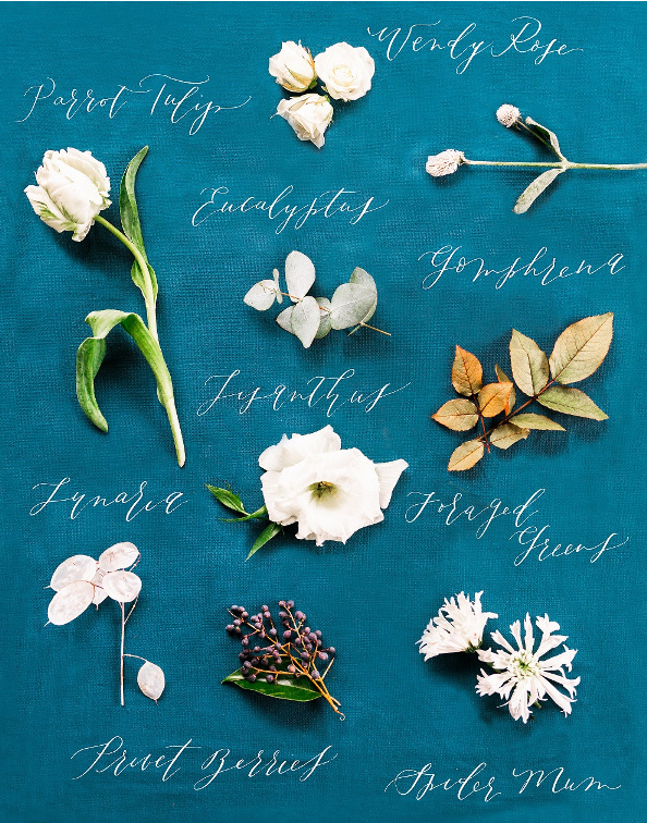 Winter wedding bouquet inspiration with white and green flowers and blue accented ribbon in Portland Oregon by Foraged Floral
