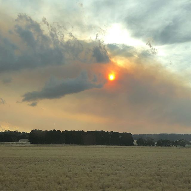 Heading north through the smoke to @monafoma - wishing some rain would help our fire fighters. . . . #raindance #smoke #sun #nofilter #bushfire #tasmania #northernmidlands #landscape #sky #friyay #monafoma #weekend #monafoma2019 #clouds #fire
