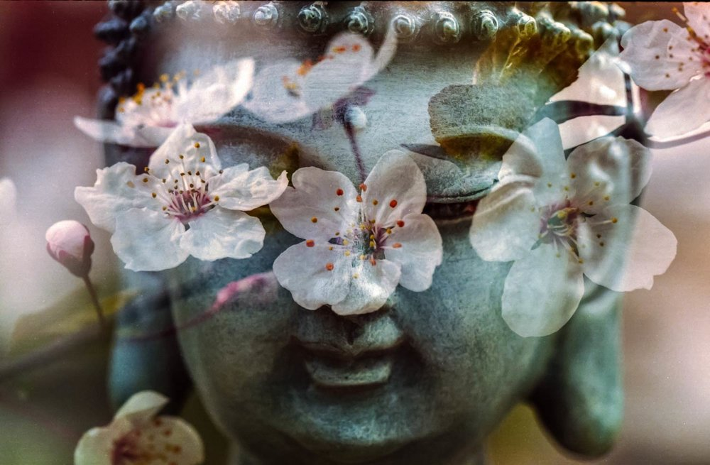 Spring Rituals for Self-Care - Renewal from the outside, in.