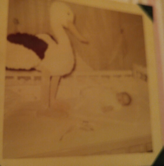 Mom always told me the stork brought me - I think this was the proof of that!
