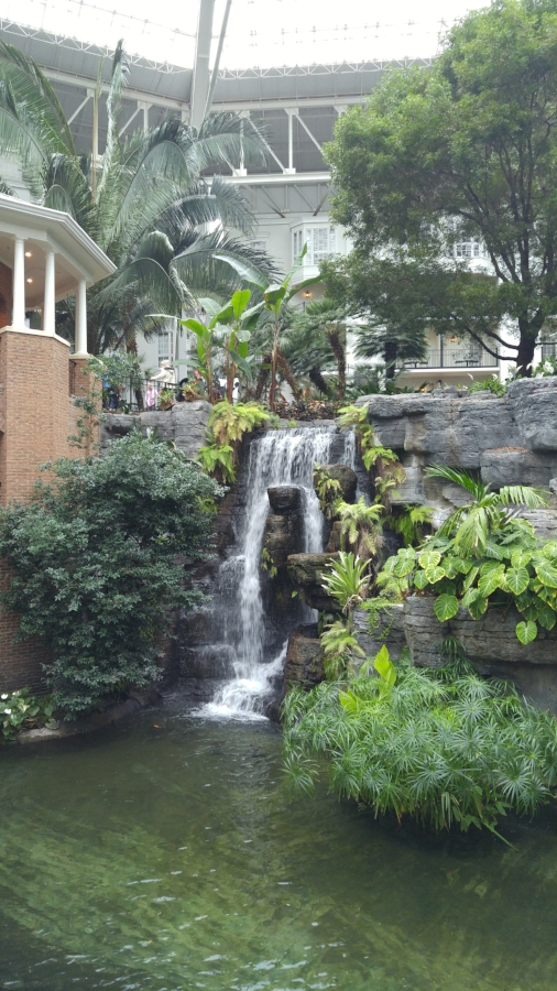 Inside the Gaylord Opyrland