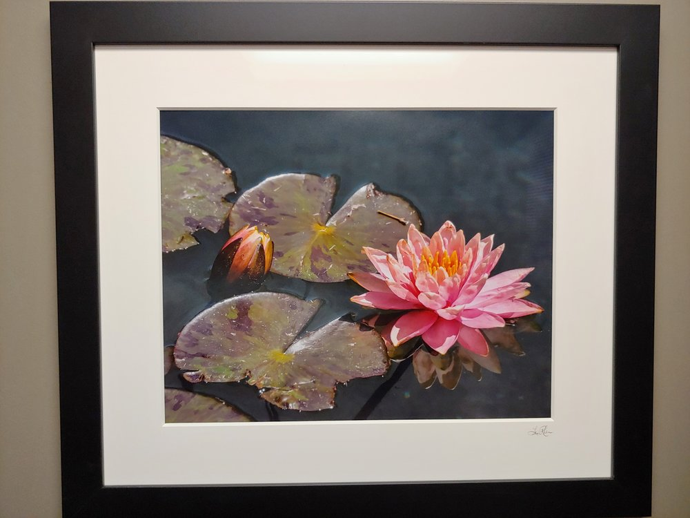 Professionally printed fine art image - hanging in my office!