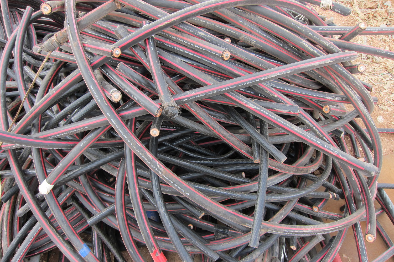 Scrap It Pine Street Salvage Wire Harness