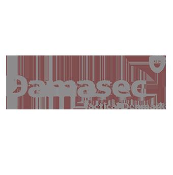 damasec-web.png