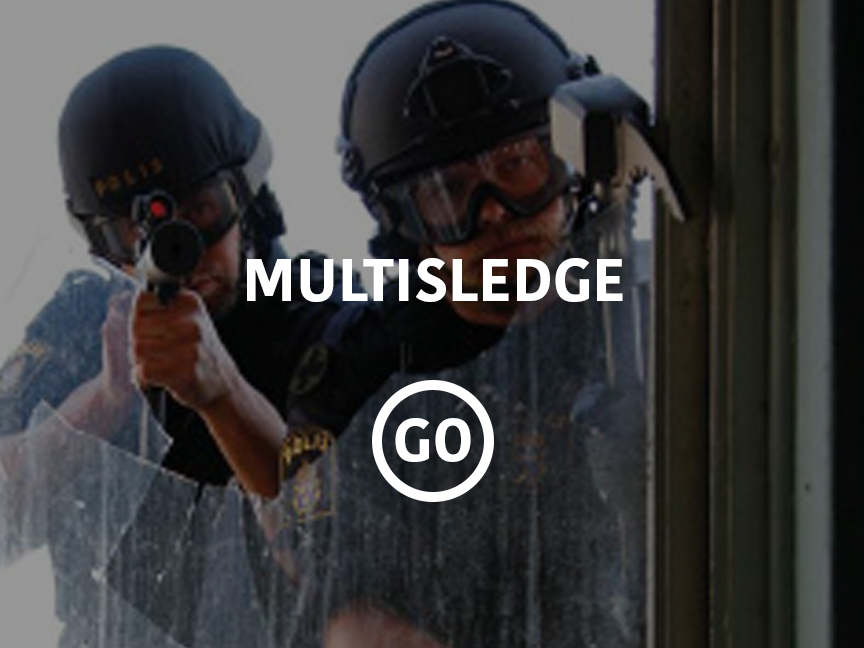 Multisledge