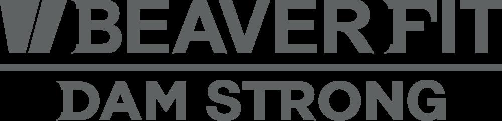 sledge hammer logo. sledge hammer logo