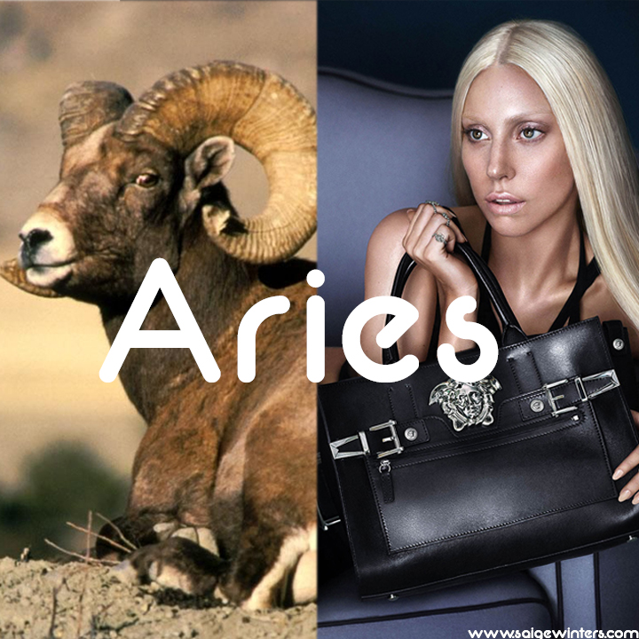 gaga and the ram text.jpg