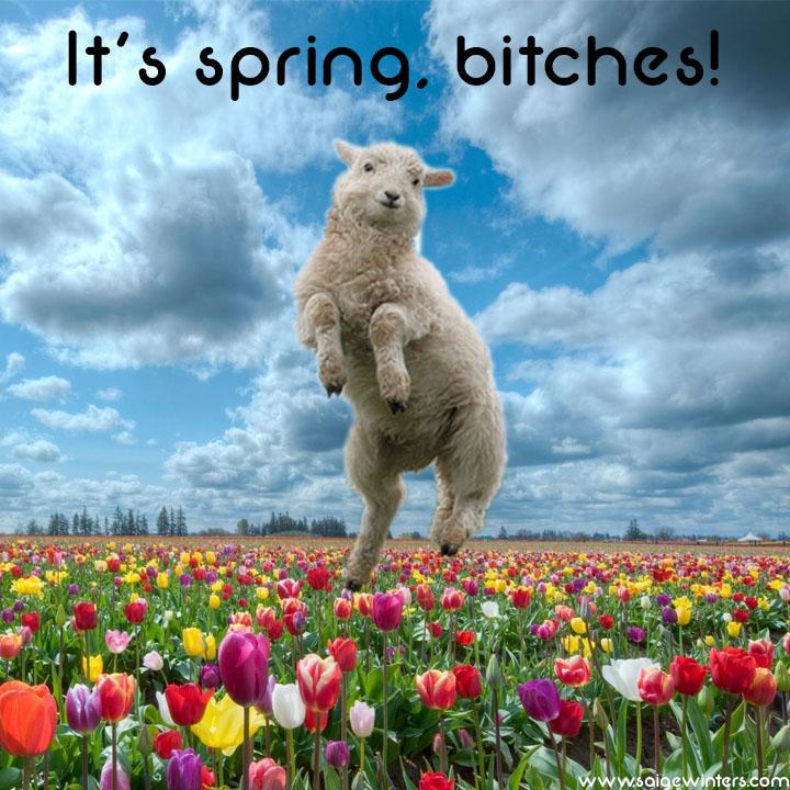spring equinox.jpg