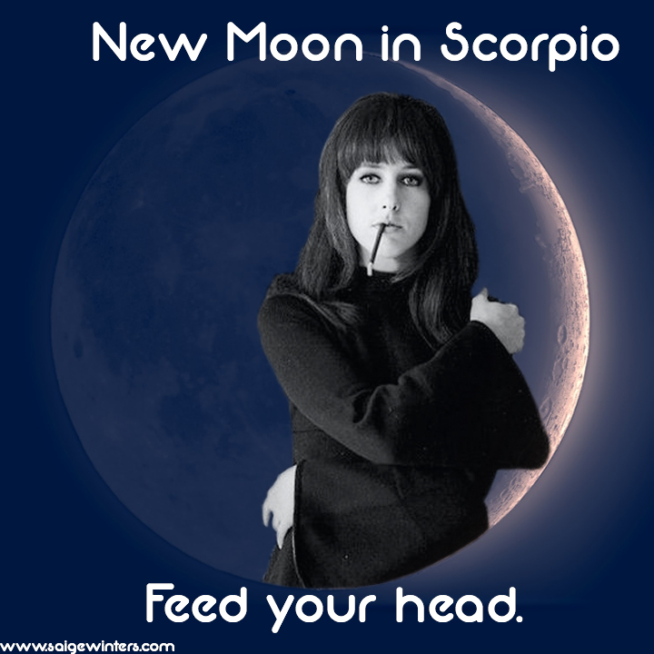 new moon in scorpio.jpg