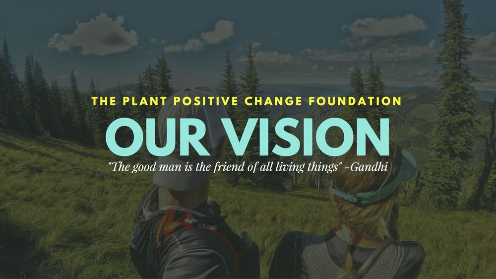 1 Plant Positive Change Foundation.jpg