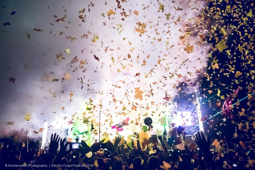 Electric Forest 2014. Used with permission from B. Hockensmith Photography