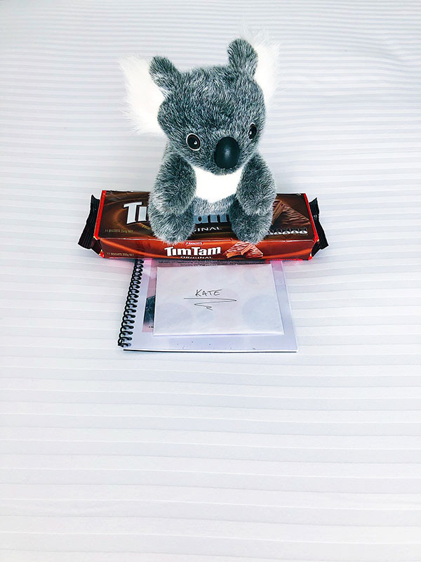 koalakatevoegele.jpg