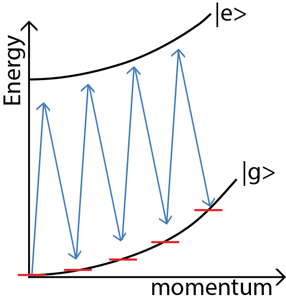 Figure 3 : In a Bragg transition, two counter-propagating beams are detuned so that transferring a specific number of photon momenta is resonant. In this diagram, the atom absorbs the momentum of 8 photons, though a different detuning would transfer a different number of photon momenta. The atom remains in the ground electronic state, but gains kinetic energy. Our group helped invent and characterize this method for atom interferometry and remains a speciality of two of our interferometers.