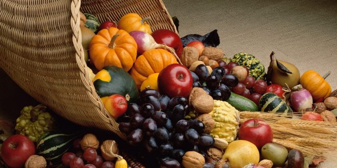 Bountiful-Harvest-660x330.jpg