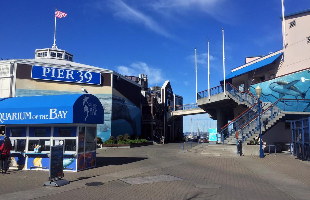 Pier 39!