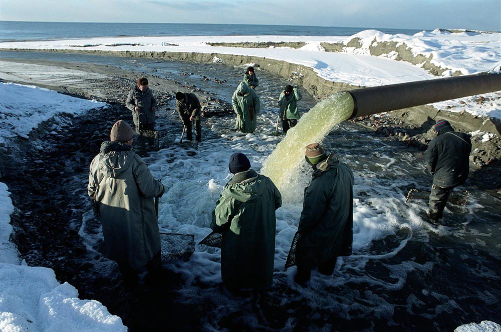 Yantarny, January 2003