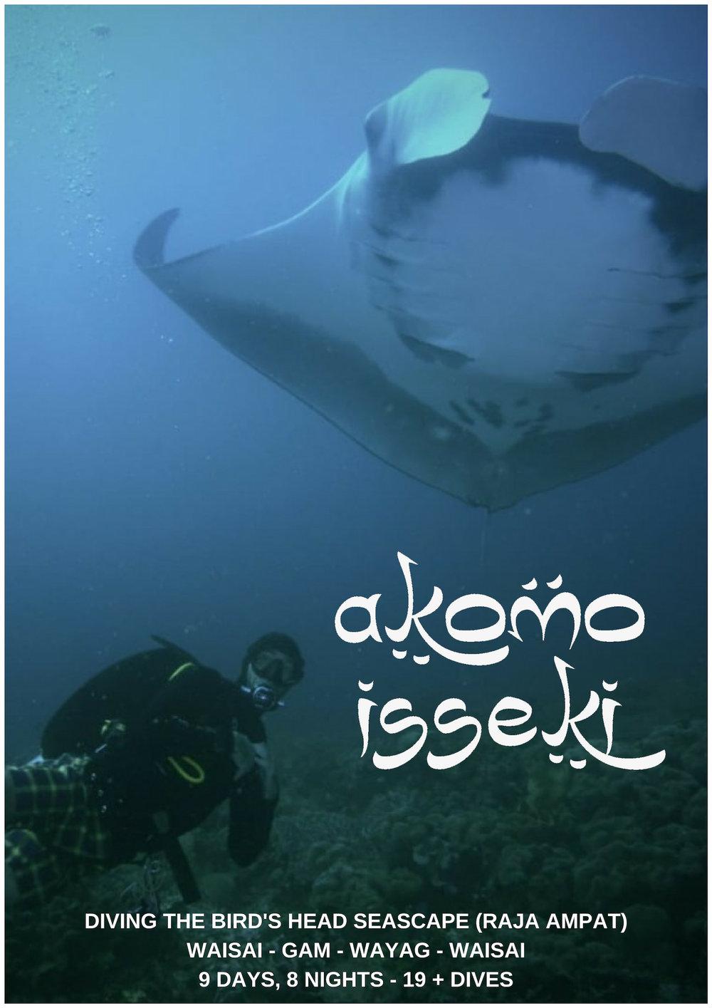 raja-ampat-islands-diving-indonesia.jpg