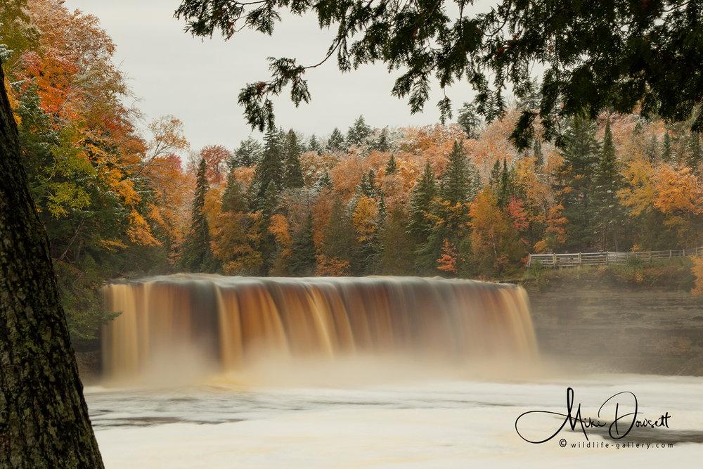 Tahquamenon Waterfall