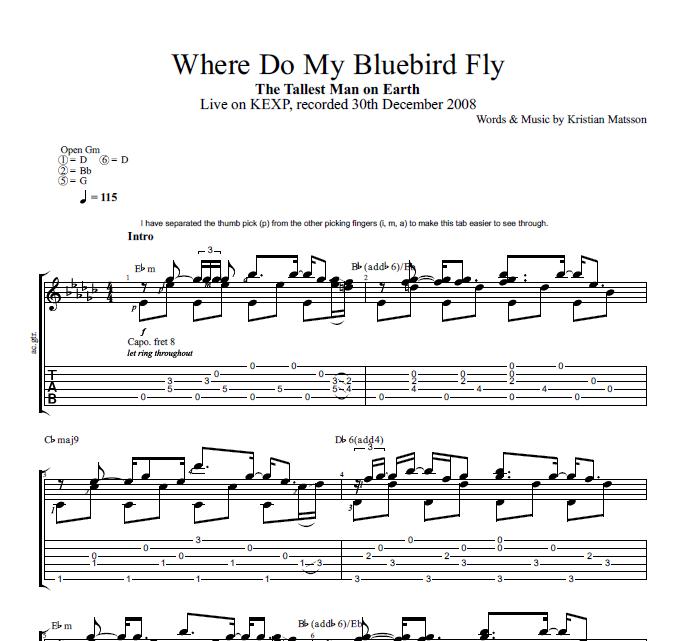 Where Do My Bluebird Fly By The Tallest Man On Earth Guitar Tab