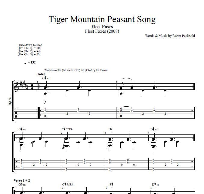 Tiger Mountain Peasant Song By Fleet Foxes Guitar Tab Chords