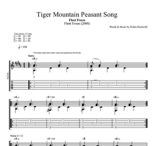 Tiger Mountain Peasant Song By Fleet Foxes