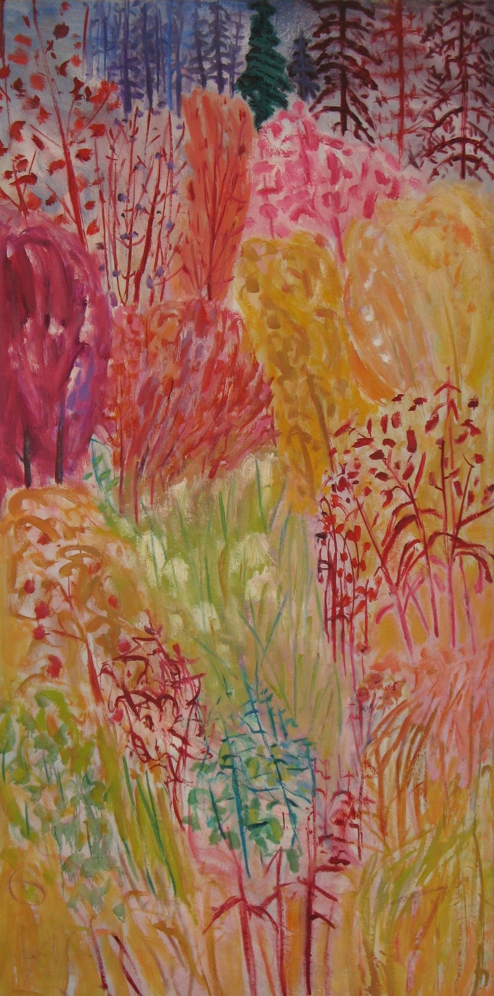 S Blooming Bush Oil on Canvas (30 x 60) $2,400.jpg