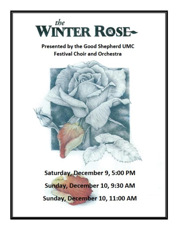 the winter rose.jpg