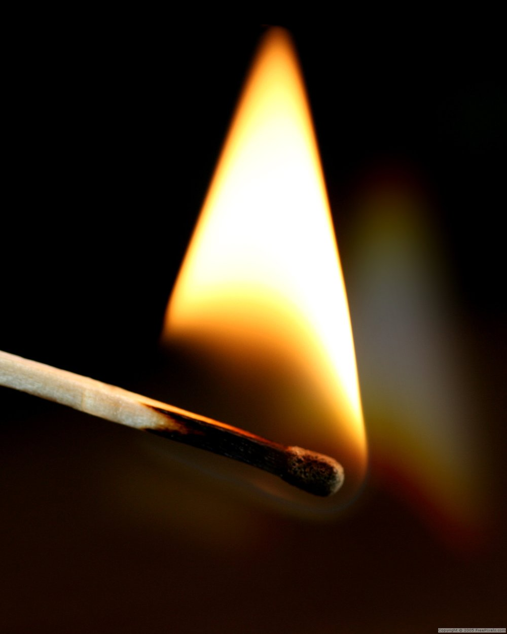 close-up of a match burning up