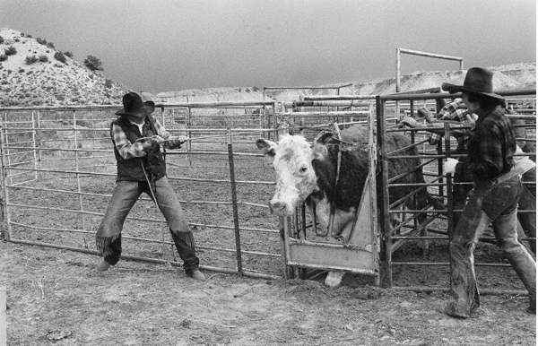 Ranch Women- Dickinson Gals.jpg