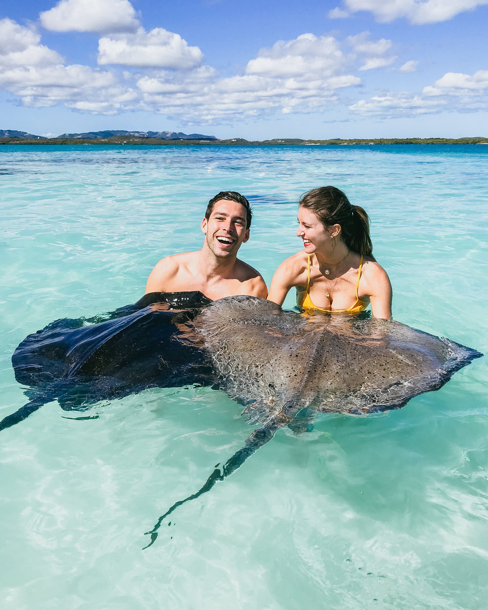 what to do in antigua caribbean stringray city