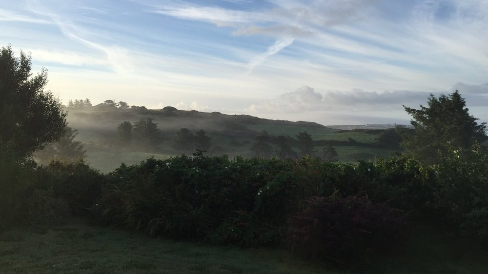 A misty morning in West Cork, Ireland