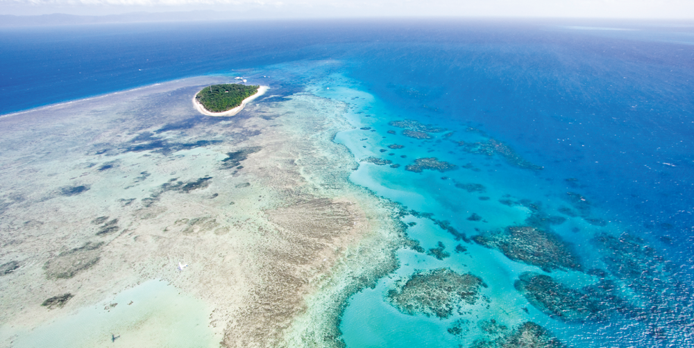 The Great Barrier Reef in Queensland, Australia, is one of the most biodiverse places on Earth.