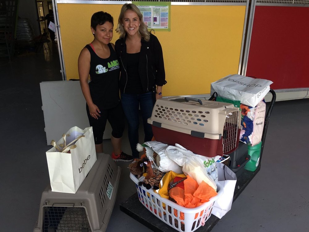 DIRTT  A big most needed item drop-off to @aarcs today thanks to some generous #DIRTT-bags! Great way to kick off the weekend! ☺️🐶🐱#giveback pic.twitter.com/loj5T91IAh  Aug 11, 2017, 4:57 PM